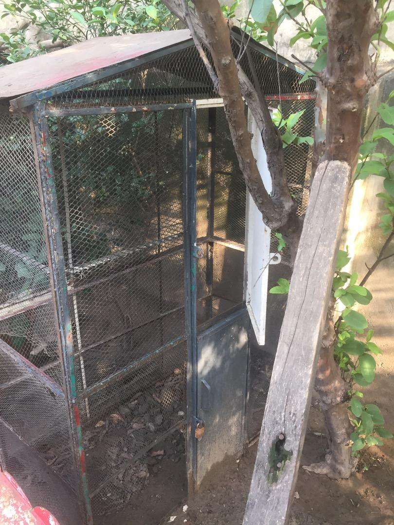 Birds Cage for sale 0