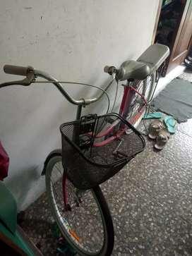 Sepeda Keranjang United