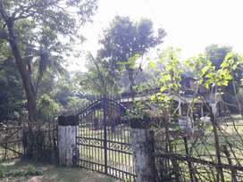 Commerical 3 Acre Land for sale in Basinga, Mayurbhanj