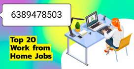 excellent job opportunity work from home on rupees 35000 monthly