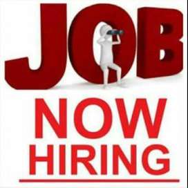 Female Job