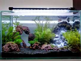 Aquascape fullshet