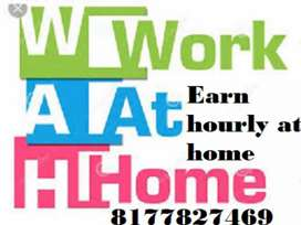 Easy home based job data typing work
