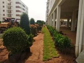 3bhk flats with low budget in rajahmundry
