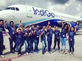 Urgent hiring for ground staff indigo airlines