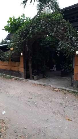 Di jual cafe / Rumah Makan di jalan udayana