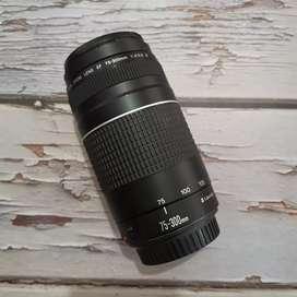 Canon EF 75-300mm Ultrasonic