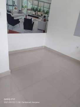 3 BHK Flat available on Rent in BPTP P Block  Sector 75,