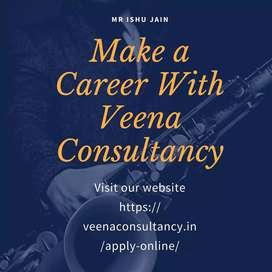 Veena consultancy