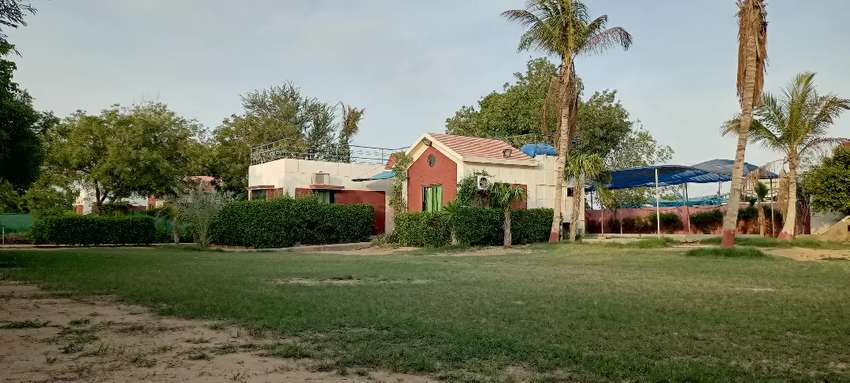 Palm Village Farm House upto 50% Off only working days 0