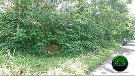 Tanah Luas Cocok Villa di Kaliurang ( AR 487 )