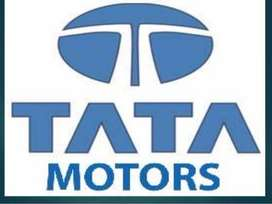 HIRING IN TATA MOTOR PVT LTD HIRING CANDIDATE FOR NEW OFFICE STAFF AND