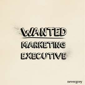 MARKETING EXECUTIVE (MALE)