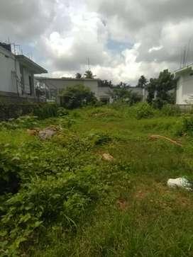 6.5 cent irginal land at kakkanad seaport airport road 2 nd plot