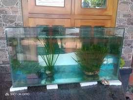 Glass tank 3+1+1/2 5 mm new tank