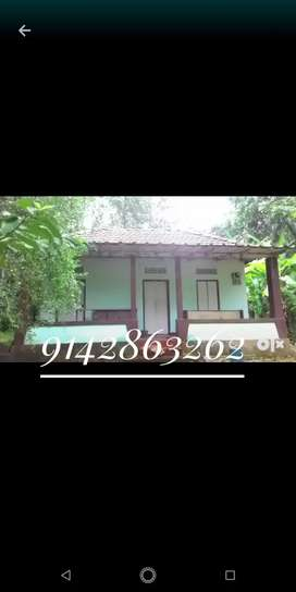 House for rent (4500) at Puthuppally Kottayam.