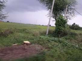 3.22 acre Land Rewa Semariya marg