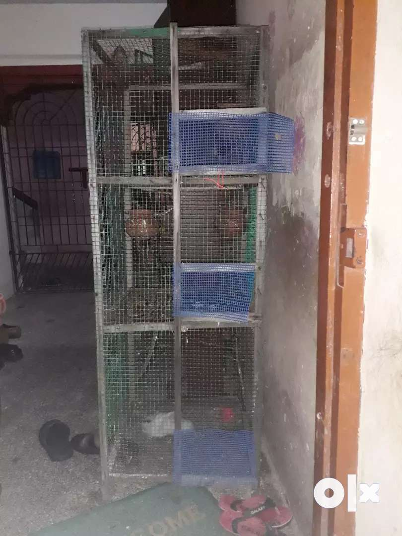 Wood cage for sale with three partitions 0