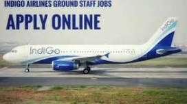 INDIGO AIRLINE Recruitment Ground Staff on roll Job  950 Candidate Req