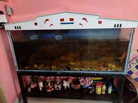 Operational fish aquarium with stand. Ht 2 ft, bth 1.5 ft, lenth 5 ft.