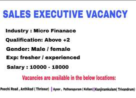 Sales Executive Required ( Micro finance)