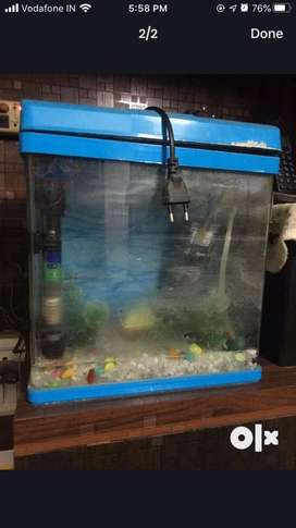 Small aquarium with thick glass body