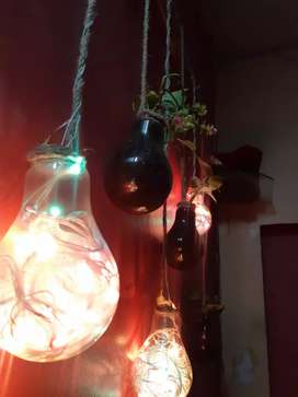 Room decor hanging lights with money plant