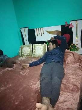 Devan bed with matress  2021 model new