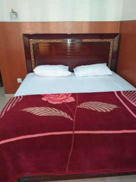 Furnished flat in bahria