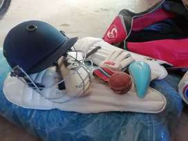 Cricket kit and net