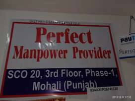 Perfect manpower provider