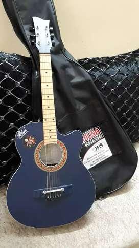 Gittar Music instrument