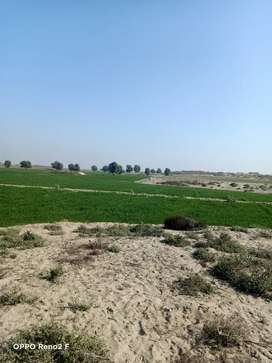400 KANAL ARMY ALLOTED AGRI LAND NEAR CHWOK SERWAR SHAHEED