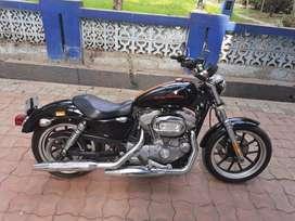 Harley Davidson Superlow 883 for sale.