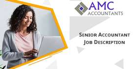 Senior Accountant Required