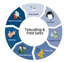 Hiring for telecalling
