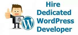 Hire Wordpress with seo executive beginner or experienced