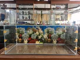 Jual aquarium 100x45x40 + background