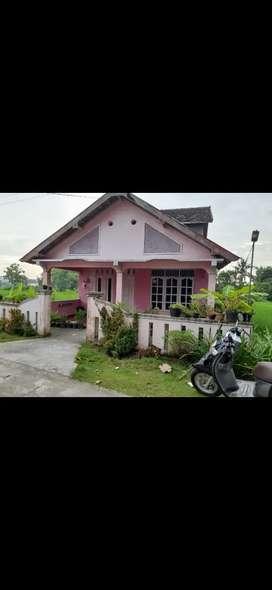 Disewakan Rumah dekat RSUD P. Senopati, Pasar, Komplek Sekolah