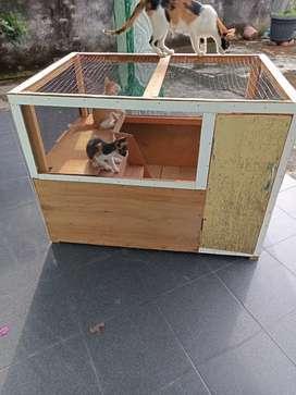 Kandang kayu kelinci,marmut,hamster dan kucing