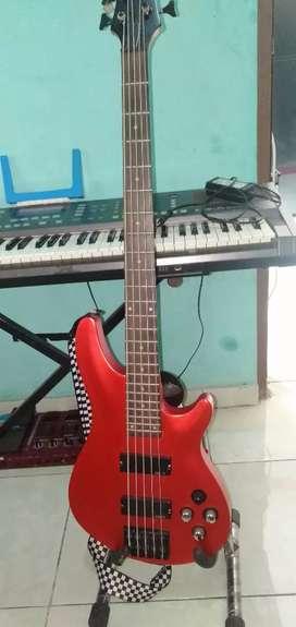 Bass Custom Schecter Senar 5