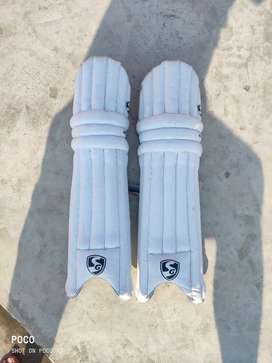 Sy Batting pads and thigh guard