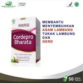 Obat Herbal Paru Paru Paling Ampuh Di Indonesia