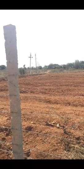 3 acres 5 guntas farm land for sale in Gouribidanuru