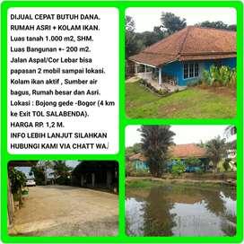 Dijual Cepat (Butuh Uang) Rumah Asri + Kolam Ikan Luas Tanah 1007m2