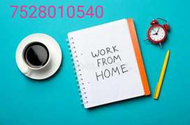 Female candidate needed fir back office job basic computer knowledge