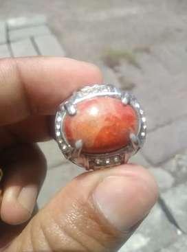Batu cincin Marjan Natural dari dalam laut.  LOKAL.