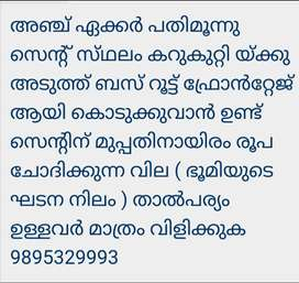 5 Acer land for immediate sale at karukutti