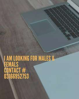 Need peshawar males,females for simple online typing homebase job.