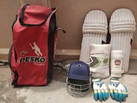 SG and SS including cricket kit including 1 pair